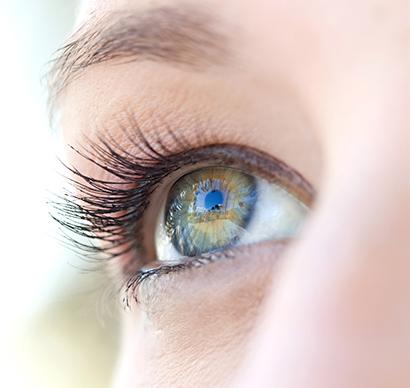 Obr. Zdravé oko